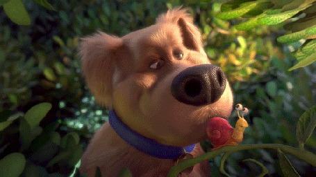Анимация Дюк из мультфильма Тайная жизнь домашних животных / The Secret Life of Pets хватает улитку