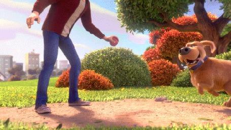 Анимация Дюк из мультфильма Тайная жизнь домашних животных / The Secret Life of Pets сбивает с ног своего хозяина