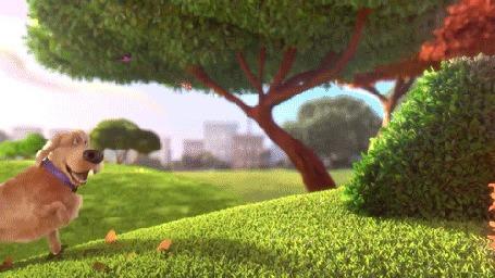 Анимация Дюк из мультфильма Тайная жизнь домашних животных / The Secret Life of Pets прыгает за бабочками в кусты
