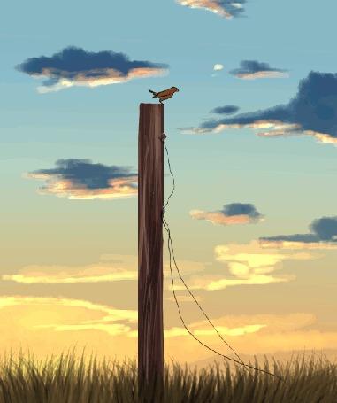 Анимация Кошка пытается поймать птичку, by DikkeBobby