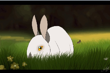 Анимация Два кролика на фоне природы, by DikkeBobby