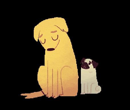 Анимация Мопс пытается обнять большую собаку
