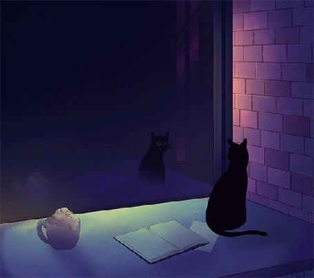 Анимация Кошка смотрит на свое отражение в окне, by comox draws