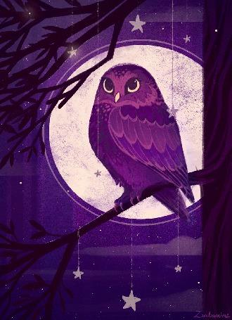 Анимация Сова на ветке дерева на фоне луны, by zandrami