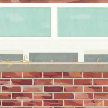 Анимация Кот прячется от мальчика за окном, by kimerry