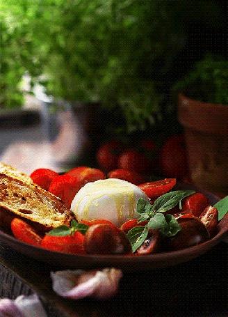 Анимация Салат из помидоров с яйцом и гренками