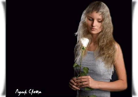 Анимация Девушка на черном фоне с белой розой в руках, (Нет женщин, которые хотят быть одинокими! Есть женщины, которым просто не все равно, с кем делить жизнь! ), автор Лучик Света
