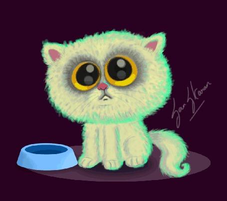 Анимация Белый котик просит кушать, by San S. Karan
