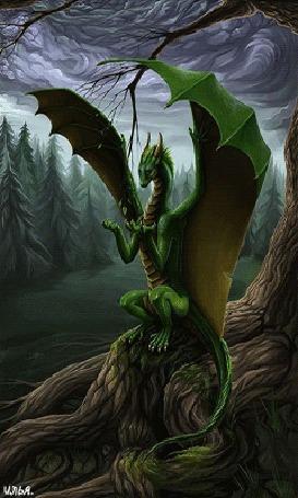 Анимация В глухом лесном массиве, под кучевыми облаками синеватых оттенков, на одном из деревьев сидит зеленый дракон, который ест листья этого самого дерева