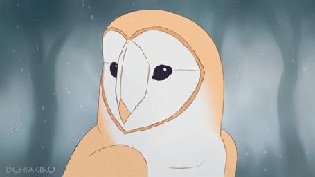 Анимация Сова под падающим снегом, by Chiakiro