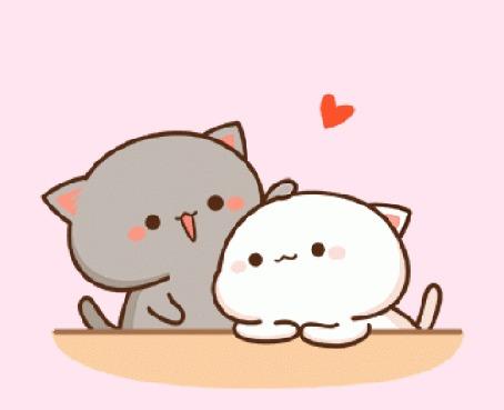 Анимация Серый и белый котята на розовом фоне