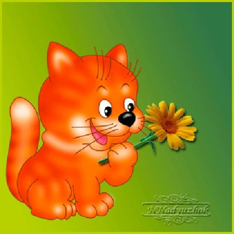 Анимация Рыжая кошечка с цветком, (какая красота)