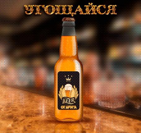 Анимация На барной стойке стоит бутылка пива в которой на вверх поднимаются пузырьки с фразой Угощайся