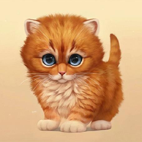 Анимация Рыжий котенок, by Chiakiro