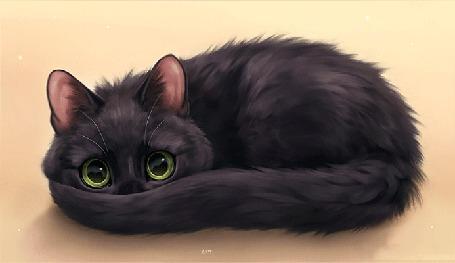 Анимация Черная кошка, by Chiakiro