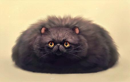 Анимация Пухлая черная кошка, by Chiakiro