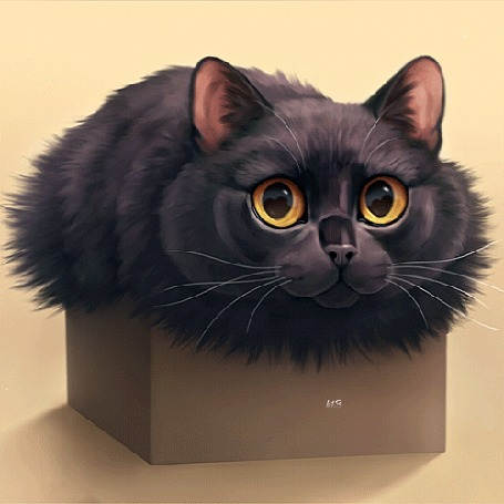 Анимация Черная кошка в коробке, by Chiakiro