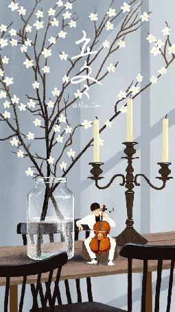 Анимация Парень играет на виолончели, сидя рядом со стеклянной банкой, в которой стоят цветущие веточки, by Paco_Yao