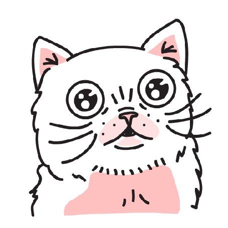 Анимация Кошка на белом фоне