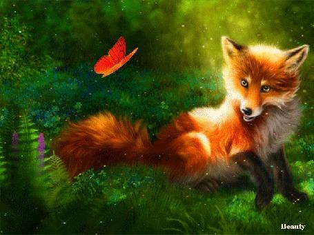 Анимация Лисица на фоне яркой оранжевой бабочки и зелени, by Beauty