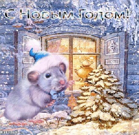 чтобы гиф поздравления с годом белой крысы сообщество яхтсменов