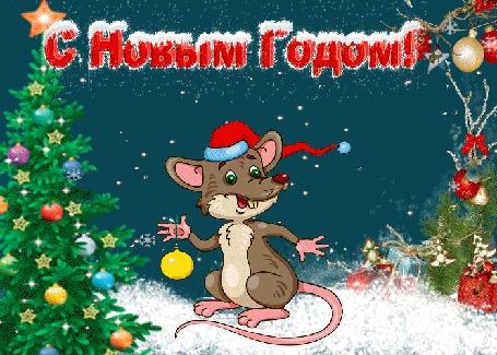 Анимация Крыса стоит на снегу в новогодней шапочке держит в лапе елочный шар на фоне новогодней елки (С Новым Годом!)