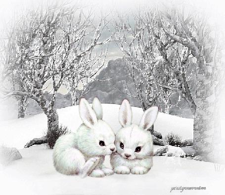 Анимация Два зайца сидят на снегу на фоне деревьев, by persiyancvanina