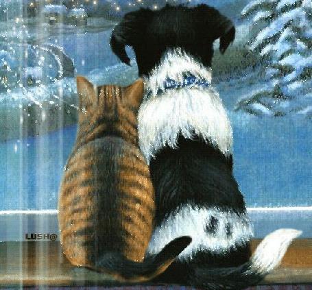 Анимация Кошка и собака сидят на подоконнике и смотрят в окно с зимним пейзажем, by Lush