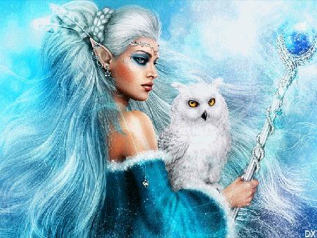 Анимация Девушка-эльф с длинными светлыми волосами держит в руке жезл и белую сову, by DX