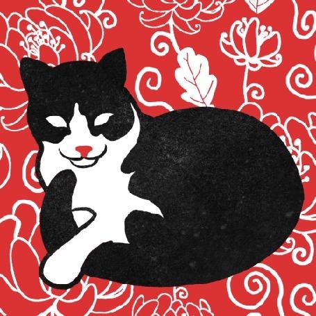 Анимация Кошка на постоянно меняющемся фоне