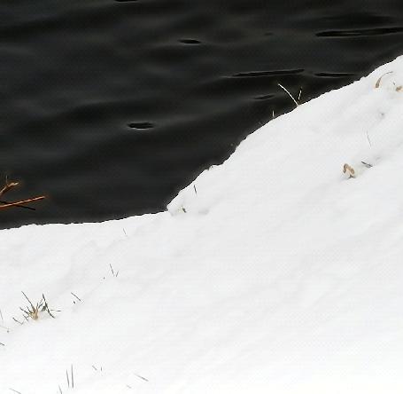 Анимация Снежный берег у реки