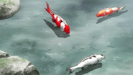Анимация Плавающие рыбки кои