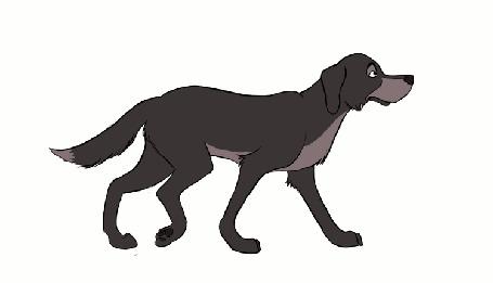 Анимация Пес на белом фоне