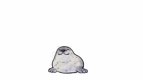 Анимация Тюлень на белом фоне