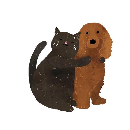 Анимация Черный кот обнимает собаку