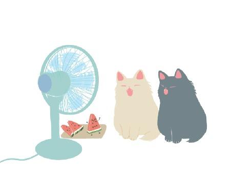 Анимация Вентилятор обдувает два кота