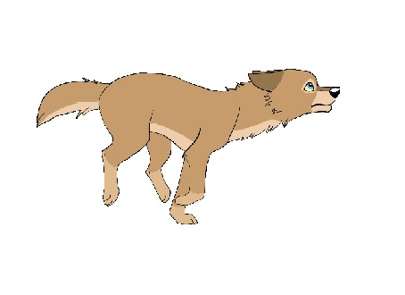 Анимация Бегущий пес на белом фоне