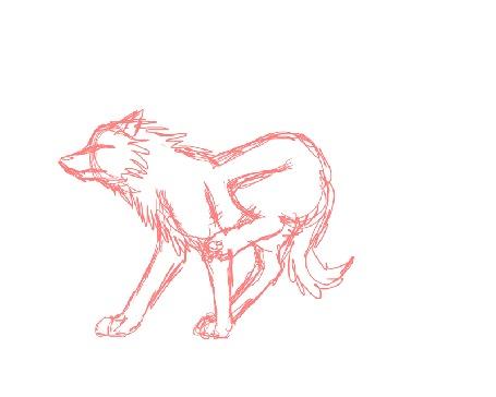 Анимация Бегущий волк на белом фоне
