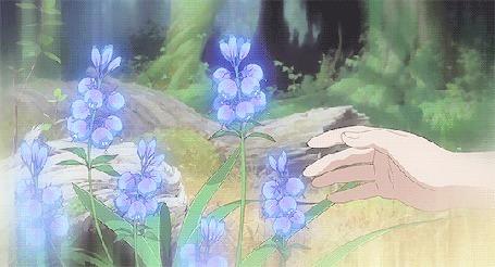Анимация Некто срывает голубой цветок